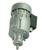 R1C250PP5B Vaccar D, Liscarrol replacement agitator