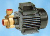 P50 brass bodied hot water pump