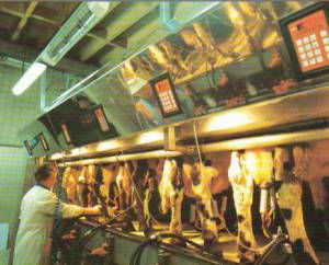 Parallel parlour in use