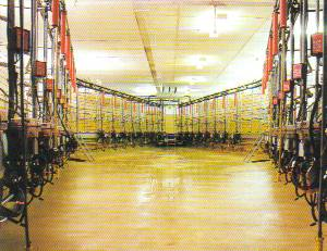 A large, light working area in the polgon type parlour