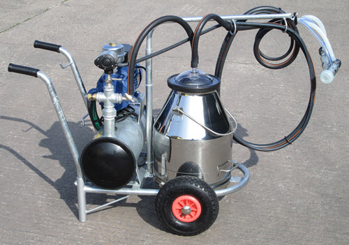 Single goat milking portable trolley.