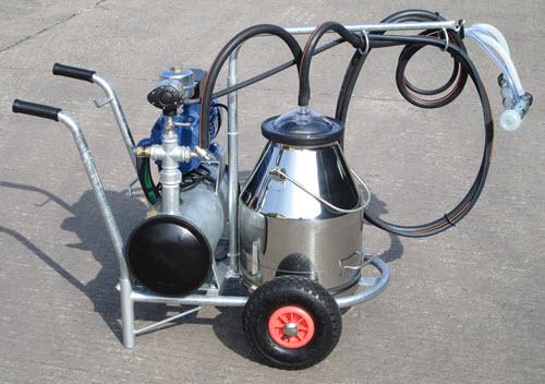 Single sheep milking portable trolley.