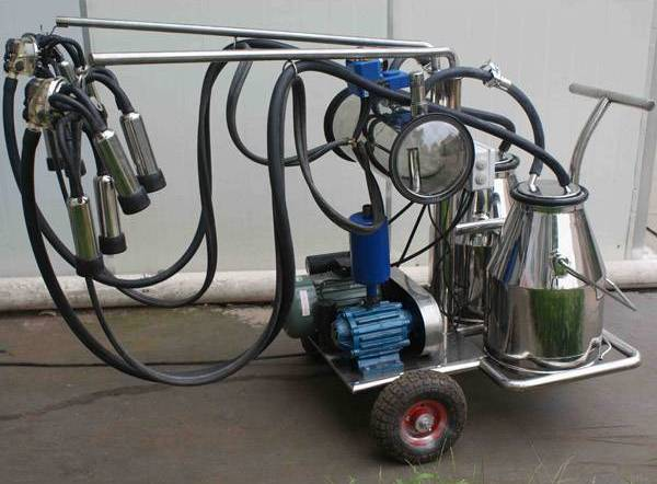 Two cow portable milking portable trolley.