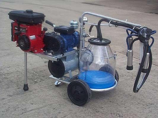 Single cow with petrol engine milking portable trolley.