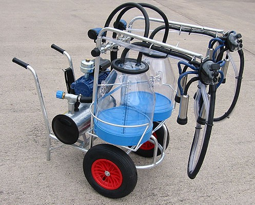 Two goat milking portable trolley.